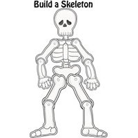 Build a Skeleton